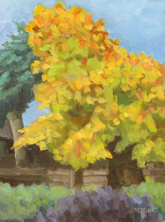 Bartram's Garden in the fall,11.12.14
